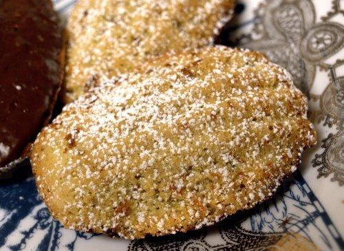 pistachio and rose madeleines
