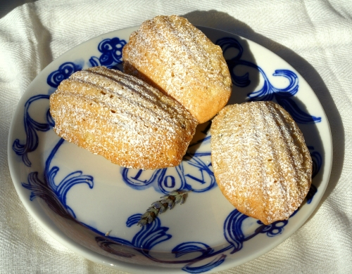 Lavender & honey madeleines