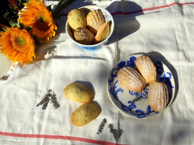 Lavender & honey madeleines